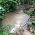 污水管网水质监测安装调试培训