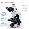 OLYMPUS奥林巴斯CX33显微镜