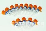 驅動蛋白KNS1抗體
