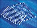 96孔细胞培养板[U底]