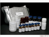 鸡IL-17,白介素17Elisa试剂盒