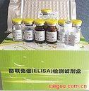 难辨梭状芽孢杆菌毒素A型抗原 ELISA试剂盒