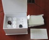 Gastrin试剂盒,人胃泌素ELISA试剂盒价格