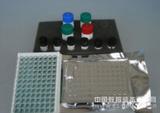 小鼠6酮前列腺素(6-K-PG)ELISA试剂盒