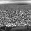Millipore圆片型超滤膜PLAC02510