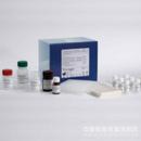 鸡白介素17(IL-17)ELISA试剂盒 现货