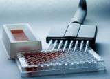 Elisakit,人睾酮(T)ELISA试剂盒价格