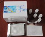 OPN试剂盒,人骨桥素ELISA试剂盒厂家