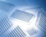 丹麦NUNC 384孔原装PCR反应板