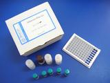 齐帕特罗一步法ELISA试剂盒