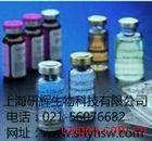 鸡可溶性腺苷酸环化酶(sAC)ELISA 试剂盒