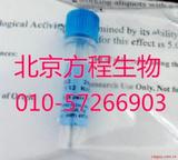 北京厂家细胞因子Recombinant Murine FGF-basic的最低价格 货号450-33