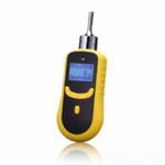 泵吸式天然气分析仪
