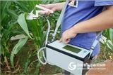 光合作用测定仪 光合测试仪