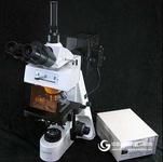 落射荧光显微镜/荧光显微镜/生物显微镜