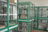 实验室-标本室