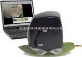 IPM數字式顯微鏡