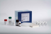 小鼠高灵敏度促甲状腺激素(U-TSH)ELISA试剂盒价格