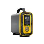 六合一氣體分析儀 PTM600-6(CO、H2S、O2、Ex、CO2、NOX)