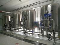 上海滨润环保供应2T每小时医药用纯化水设备