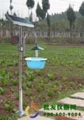 太陽能頻振式誘蟲燈