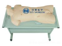 综合穿刺术与叩诊检查训练模型