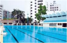 戴思樂 泳池一體化水處理設備 壁掛式泳池設備 無需機房