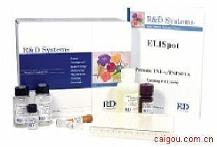 人α干扰素Elisa试剂盒,IFN-α试剂盒