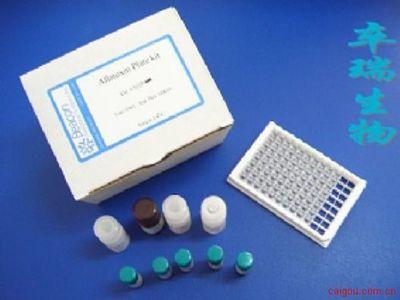解脲支原体抗体检测试剂盒