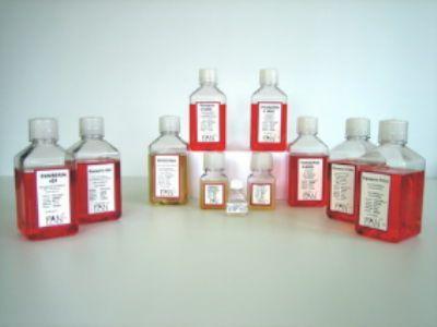 四环素族检定培养基