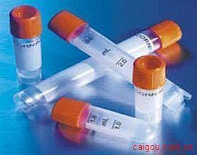 辣根过氧化物酶标记羊抗小鼠IgG