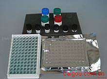 人TATA盒结合蛋白/TBP相关因子(TAF)ELISA试剂盒