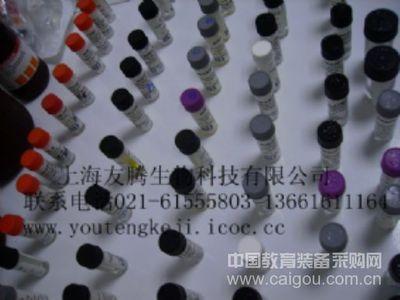 人神经肽Y(NP-Y)ELISA Kit