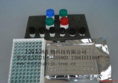 牛α1-酸性糖蛋白(α1-AGP)ELISA 试剂盒