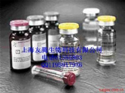人乙型肝炎病毒X抗原(HBxAg)ELISA Kit
