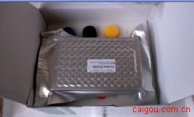 牛γ干扰素(IFN-γ)ELISA Kit