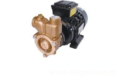 气液混合泵/混合泵/混气泵/气液泵/涡流泵  型号:HAD-20GLM-1