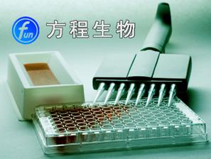 大鼠甲状旁腺素ELISA Kit价格,PTH 进口ELISA试剂盒说明书北京检测