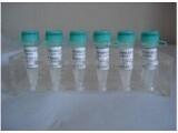 进口标准品抗敏安吡啶N氧化物