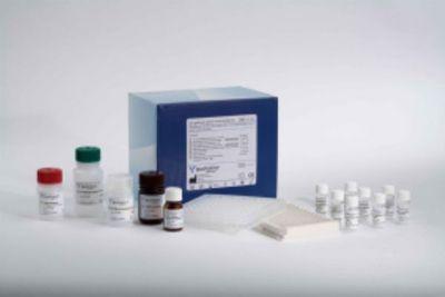 小鼠甲基化酶(Methylase)ELISA试剂盒价格