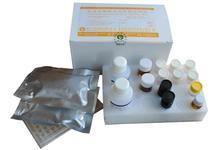 鸭细胞色素P4502E1ELISA试剂盒
