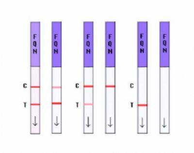 赭曲霉毒素快速检测试纸条 ( 粮食5 饲料100ppb)