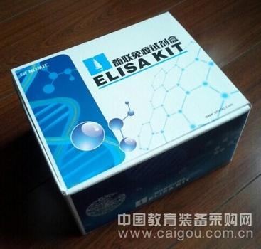 人CaN试剂盒,CaN ELISA KIT,人钙调磷酸酶试剂盒
