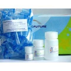 大鼠1,3-βD葡葡糖苷酶elisa试剂盒,1,3-βD glucosidase试剂盒免费咨询无忧订购