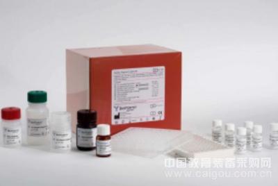 小鼠胰岛素样生长因子结合蛋白1检测范围(IGFBP-1)ELISA试剂盒包被