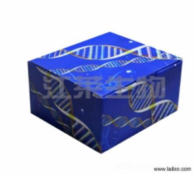 人免疫球蛋白A(IgA)ELISA检测试剂盒