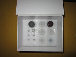 胰蛋白酶ELISA试剂盒厂家代测,进口人(trypsin)ELISA Kit说明书
