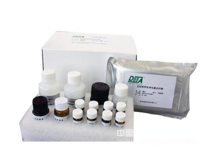 人细胞周期素D3(Cyclin-D3)ELISA试剂盒