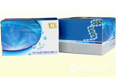 大鼠总胆固醇ELISA试剂盒