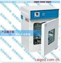 隔水式培养箱300型